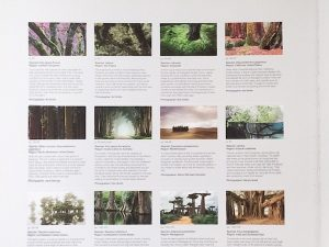 Photo credits page from The Life and Love of Trees
